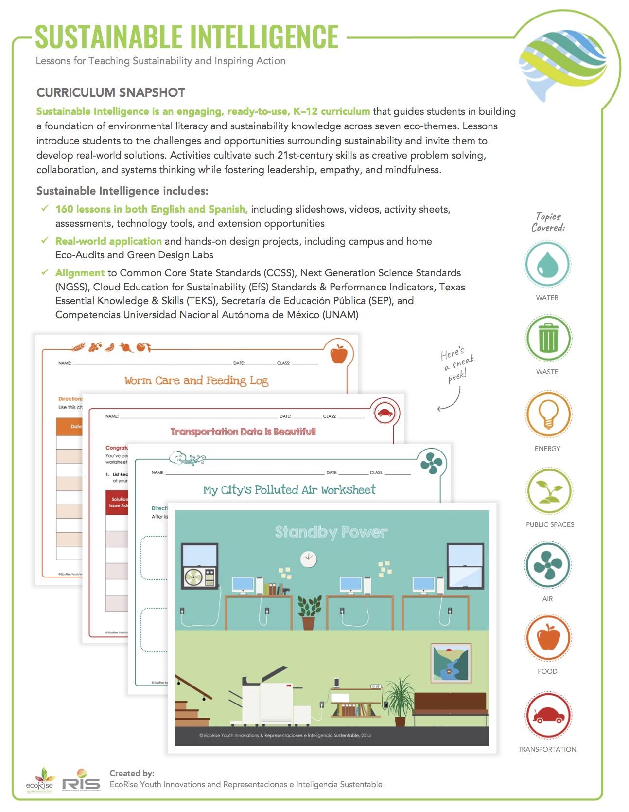 Sustainable Intelligence Curriculum