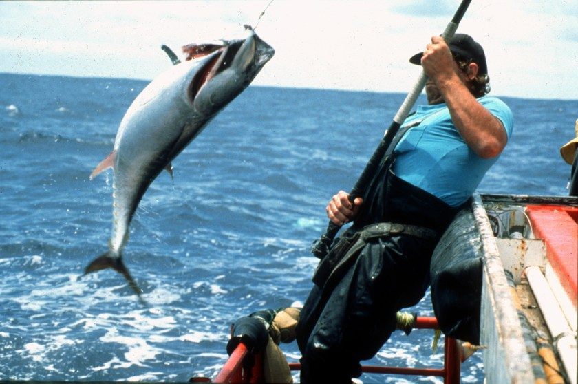 Fishermam pulling a fish out of the water on the end of a fishing line