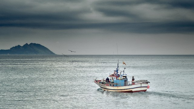 Fishing boat on grey ocean waters with sea gulls circling against a grey, gloomy sky.