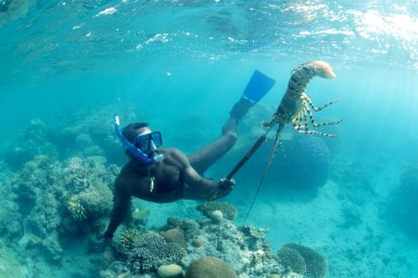 man snorkelling with lobster