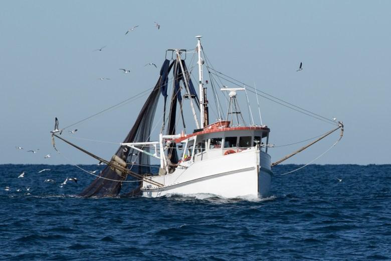 trawling ship at sea