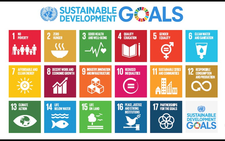 graph with 15 UN development goals