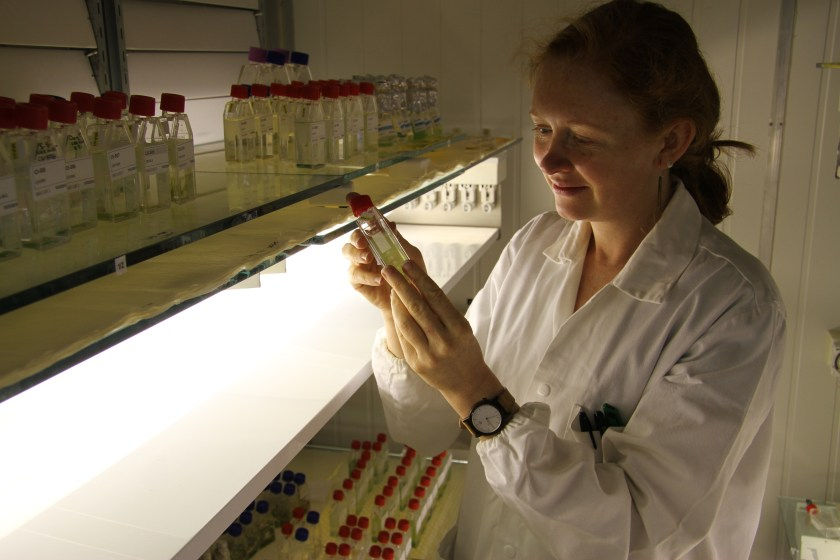 woman in lab coat standing next to shelves with rows of small containers, holding a small container