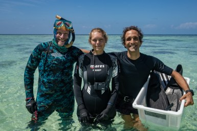 Researchers at Heron Island