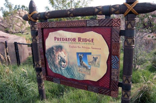 exhibit-Predator-Ridge2