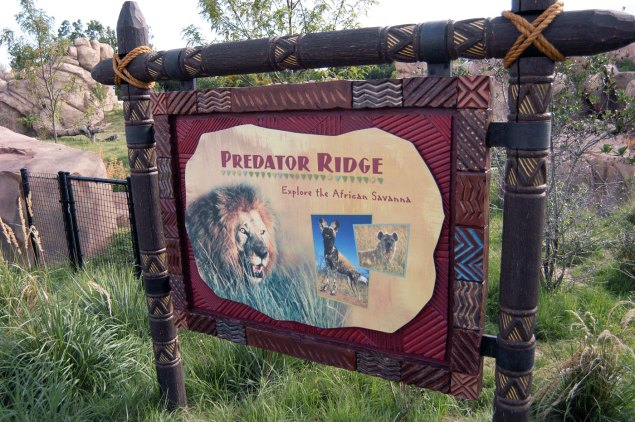 exhibit-Predator-Ridge2