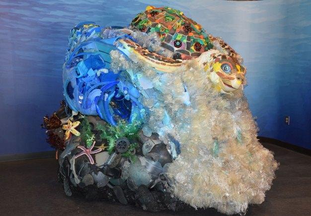 exhibit-sea-lion-12