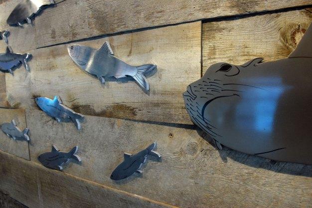 exhibit-sea-lion-13