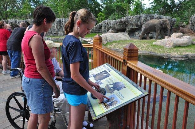 exhibits-elephant-11b