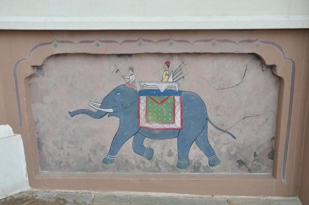 exhibits-elephant-13b