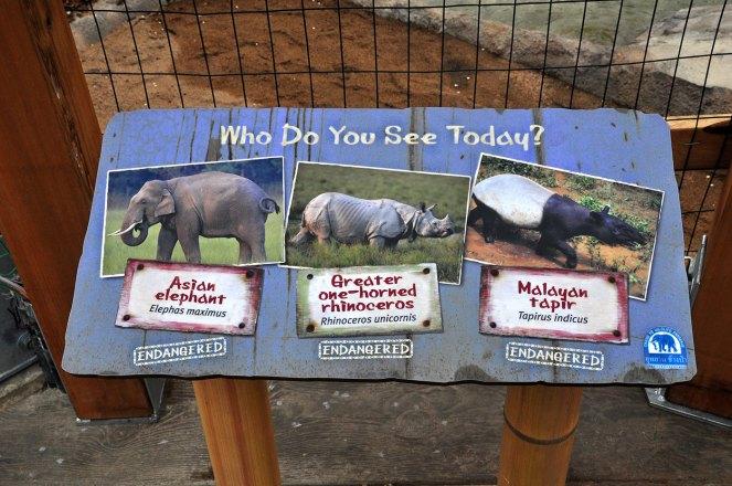 exhibits-elephant-18b