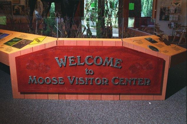 exhibits-moose-1b