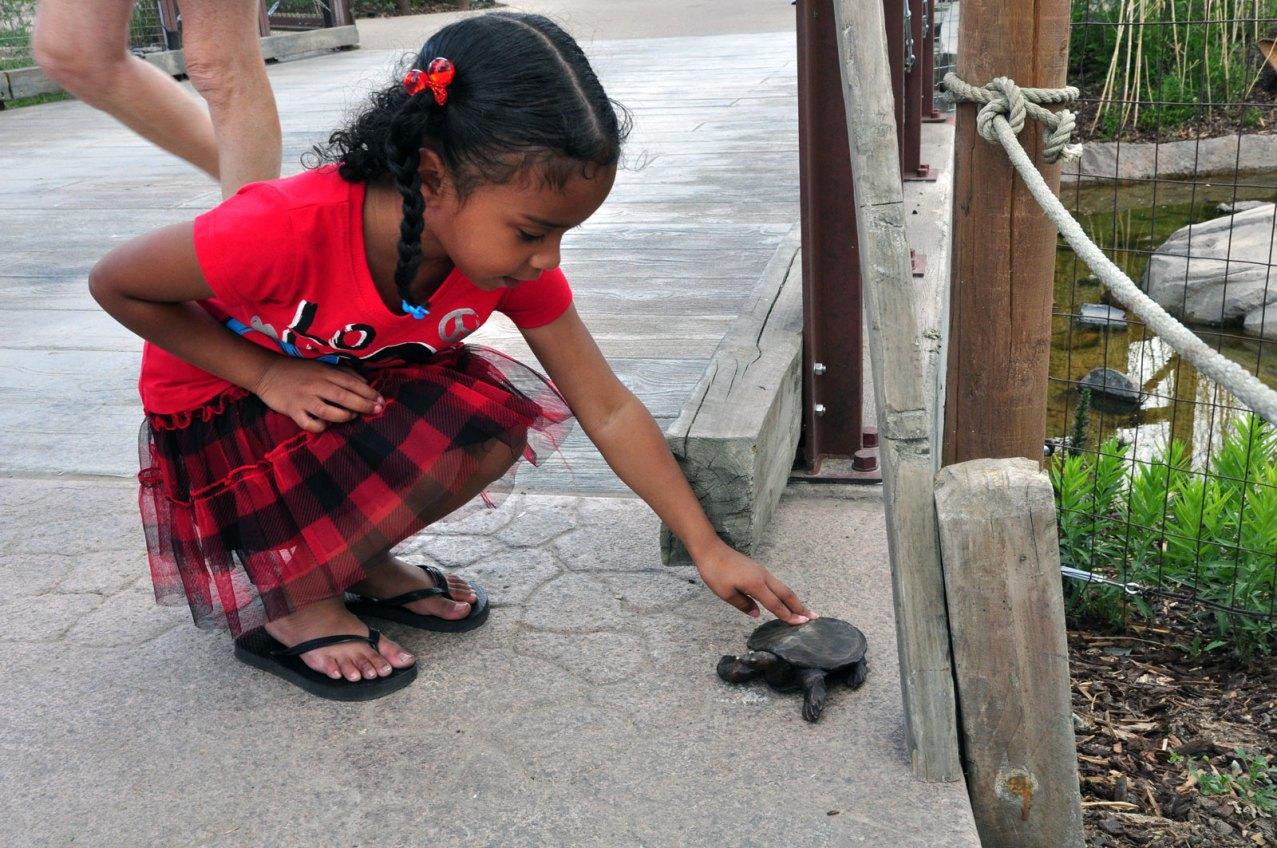 sculpture-girl-turtle