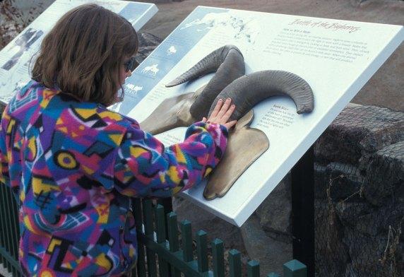 sculpture-tactile-girl-ram-horns