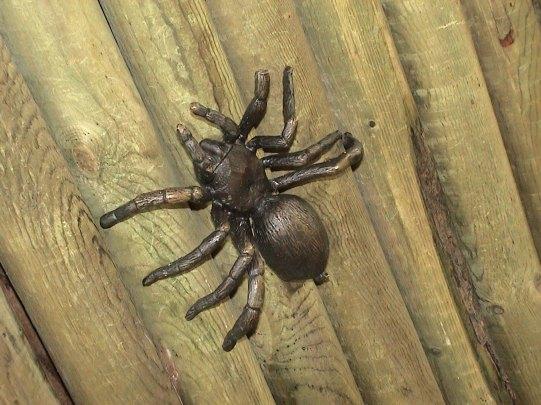 sculpture-tactile-tarantula