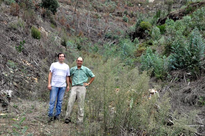 Voluntários com vale nº 6 em fundo