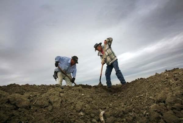 Carbon Farming: California Focus on Soil to Meet Climate ...
