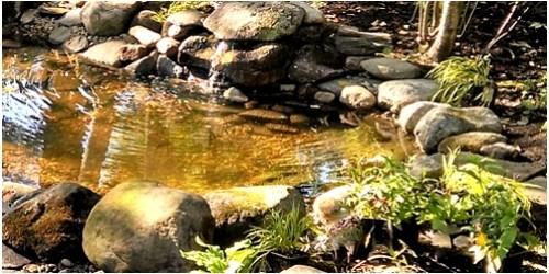 Manmade pond