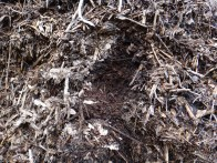 Composted Scotch Broom - thermophilic composting with a little horse manure creates an amazing spongy moist media.