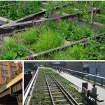 High Line Park New York - Grün, wo einst Züge verkehrten