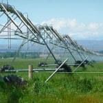 Photovoltaik soll Maisernte steigern