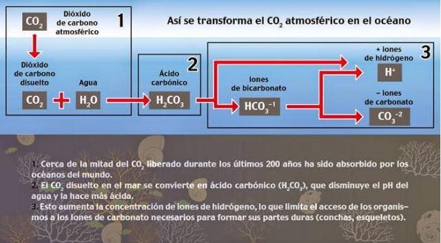 co2 atmosferico oceano