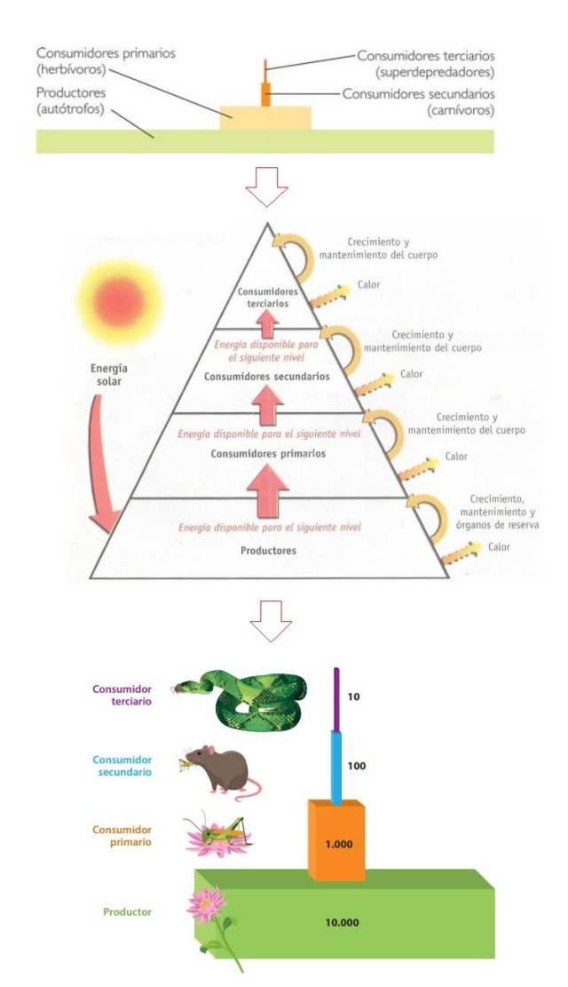 pirámide energía