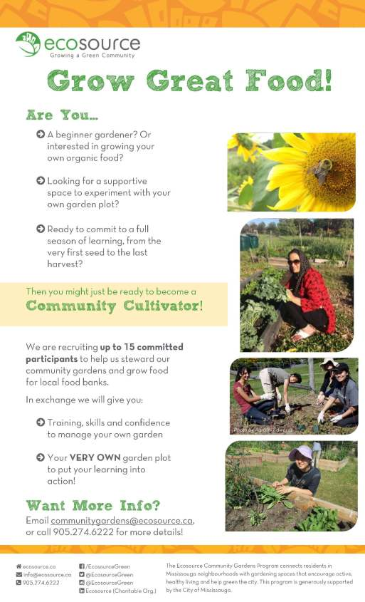 Community Cultivators_Outreach Flyer_Jan2016