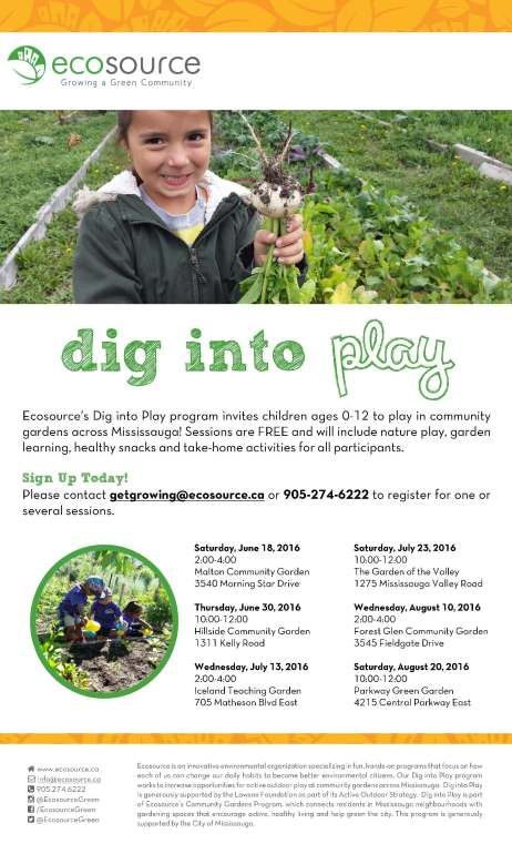 Dig into Play - Community Flyer 2016