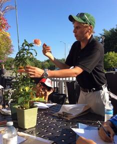 flower demonstration