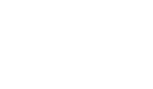 Eco Spray Insulation Logo Light 1