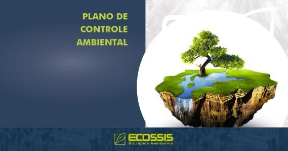 Relatório e Programa de Controle Ambiental (RCA e PCA)