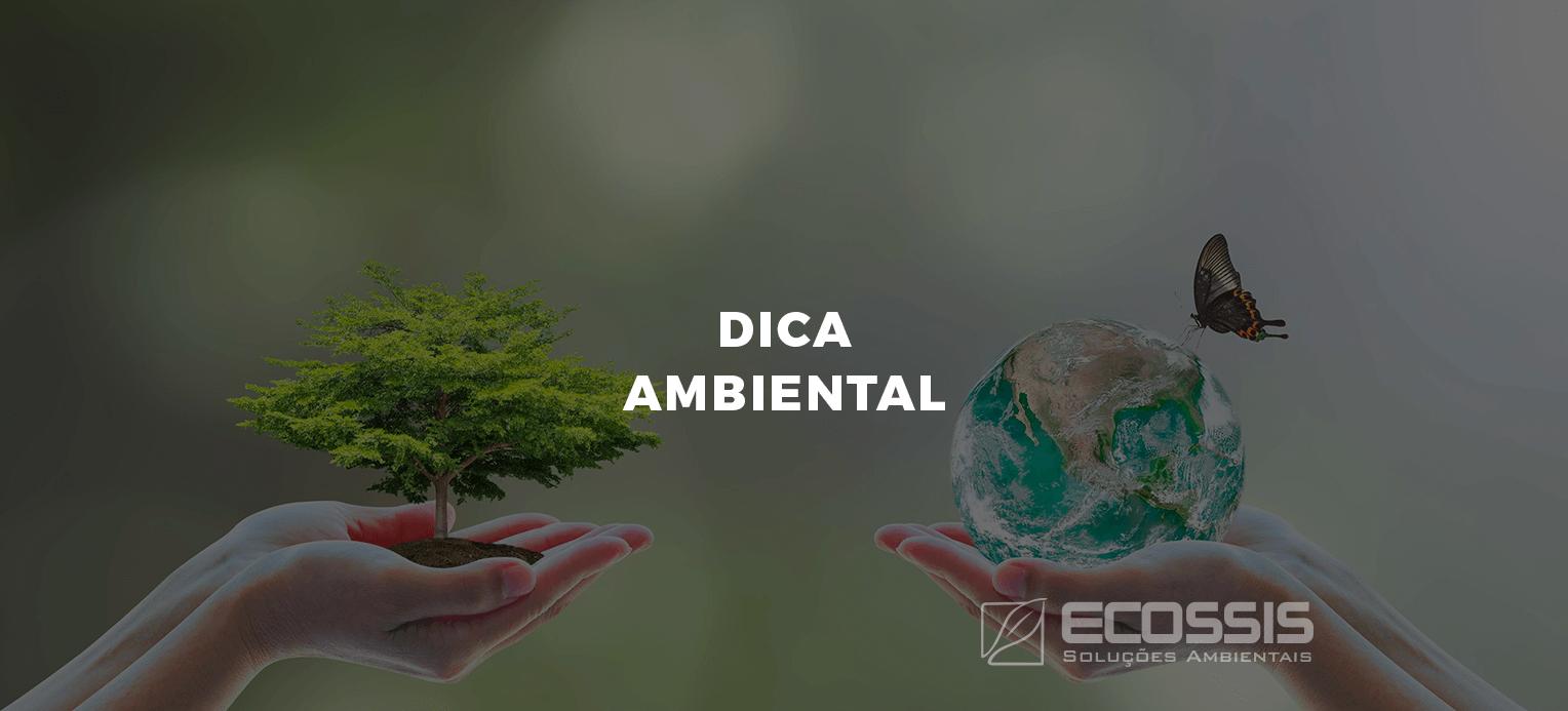 dica ambiental