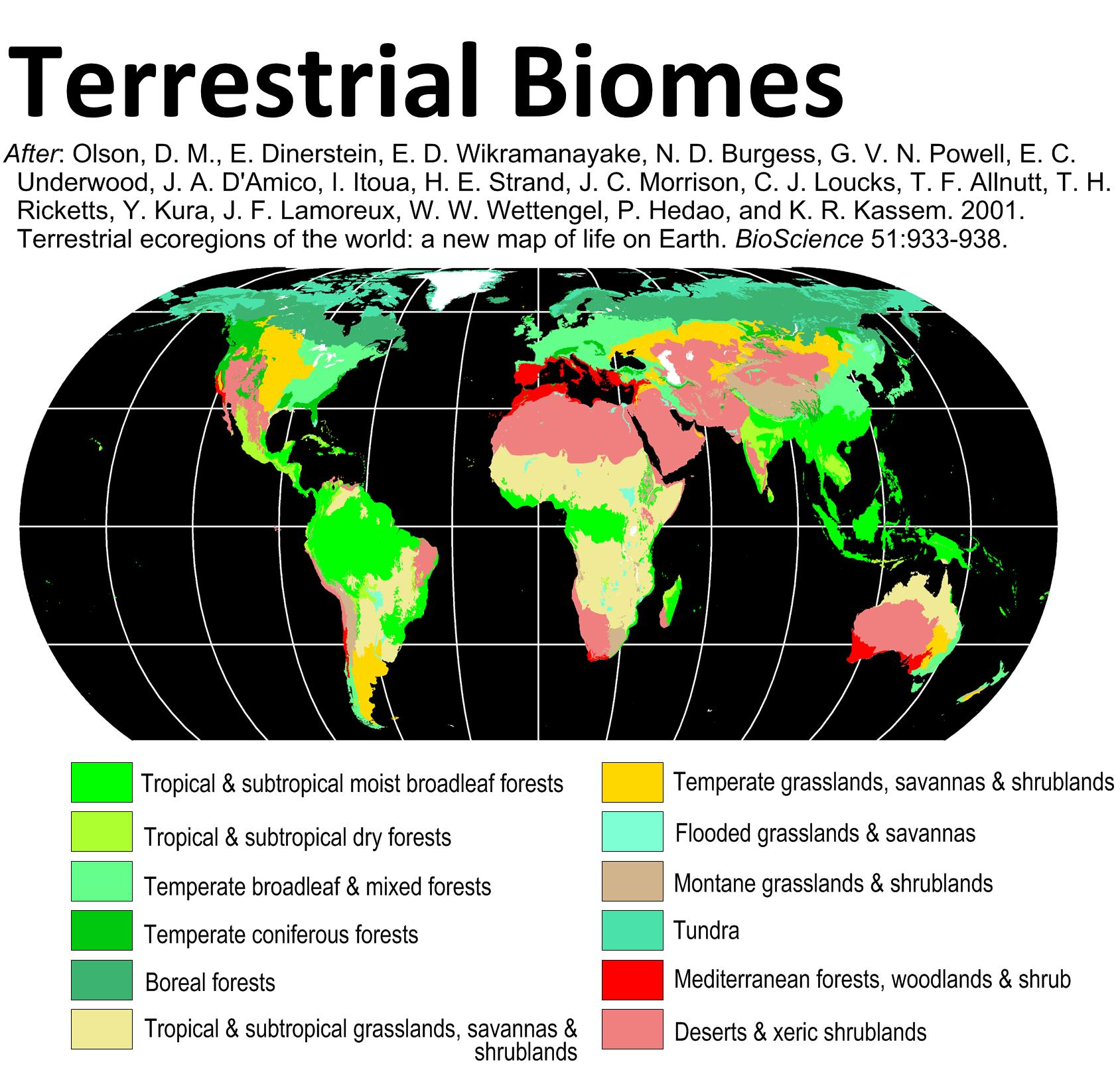 Ecosystem And Biomes