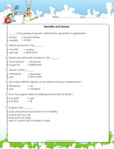 6th Grade Science Worksheets Downloads