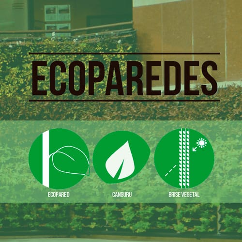 ecoparedes-movil