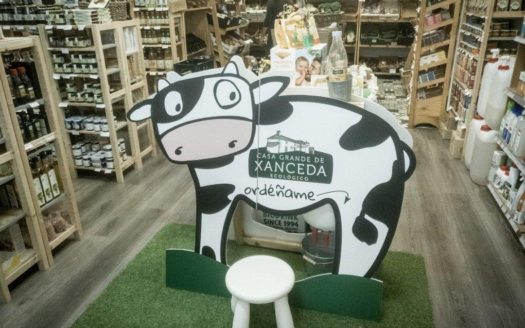 Unha vaca na tenda!!