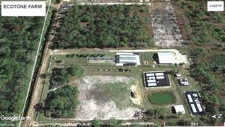 Ecotone Farm-Fellsmere, FL