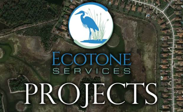 Ecotone Services Project Featured Image
