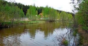 Река Саморядовка