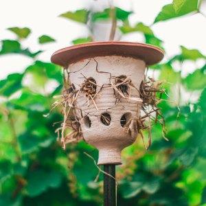 Lieveheersbeestjespot, gemaakt uit lariks. Deze nestkast is op maat gemaakt voor lieveheersbeestjes.