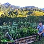 Eco+caminhos+horta+02
