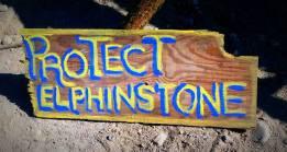 elphinstone-007