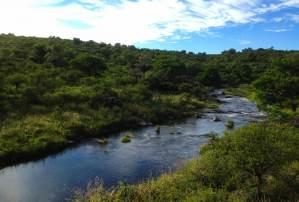 Campo Divino - Naturaleza-23