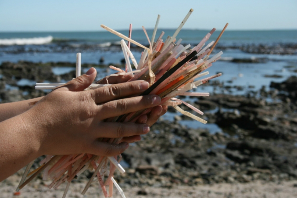 Plastic straws is not biodegradable
