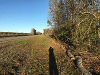 Erosion Control Logs by EcoWattle on US 190 Jasper County