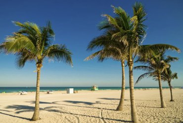 Florida Travel Bargains Now in Palm Beach, Boca Raton