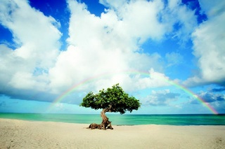 Aruba, the happy Caribbean island