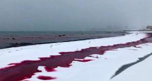«Mατωμένη» θάλασσα στο Καζακστάν