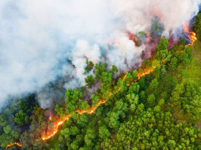 Φωτογραφίες που έχουν ξεχωρίσει στο διαγωνισμό Κλιματικής Αλλαγής 2020